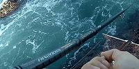青物釣りの竿について